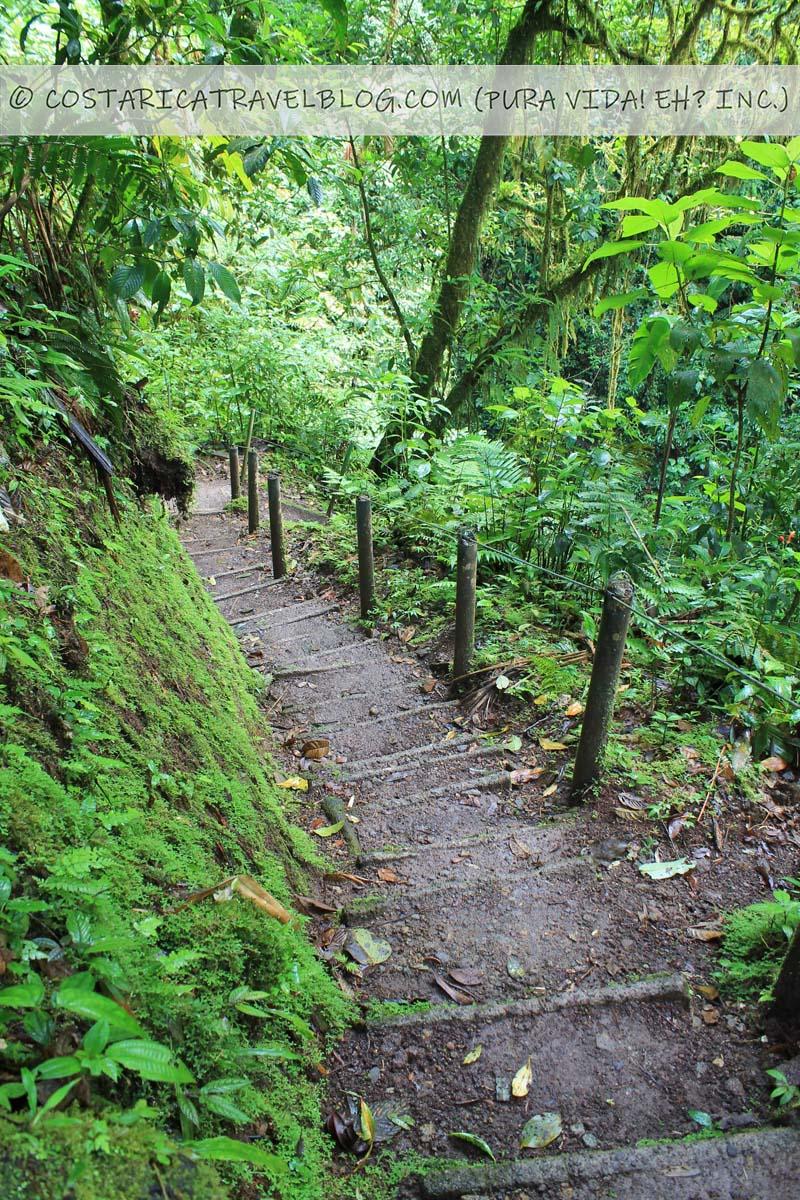 best hanging bridges in Costa Rica