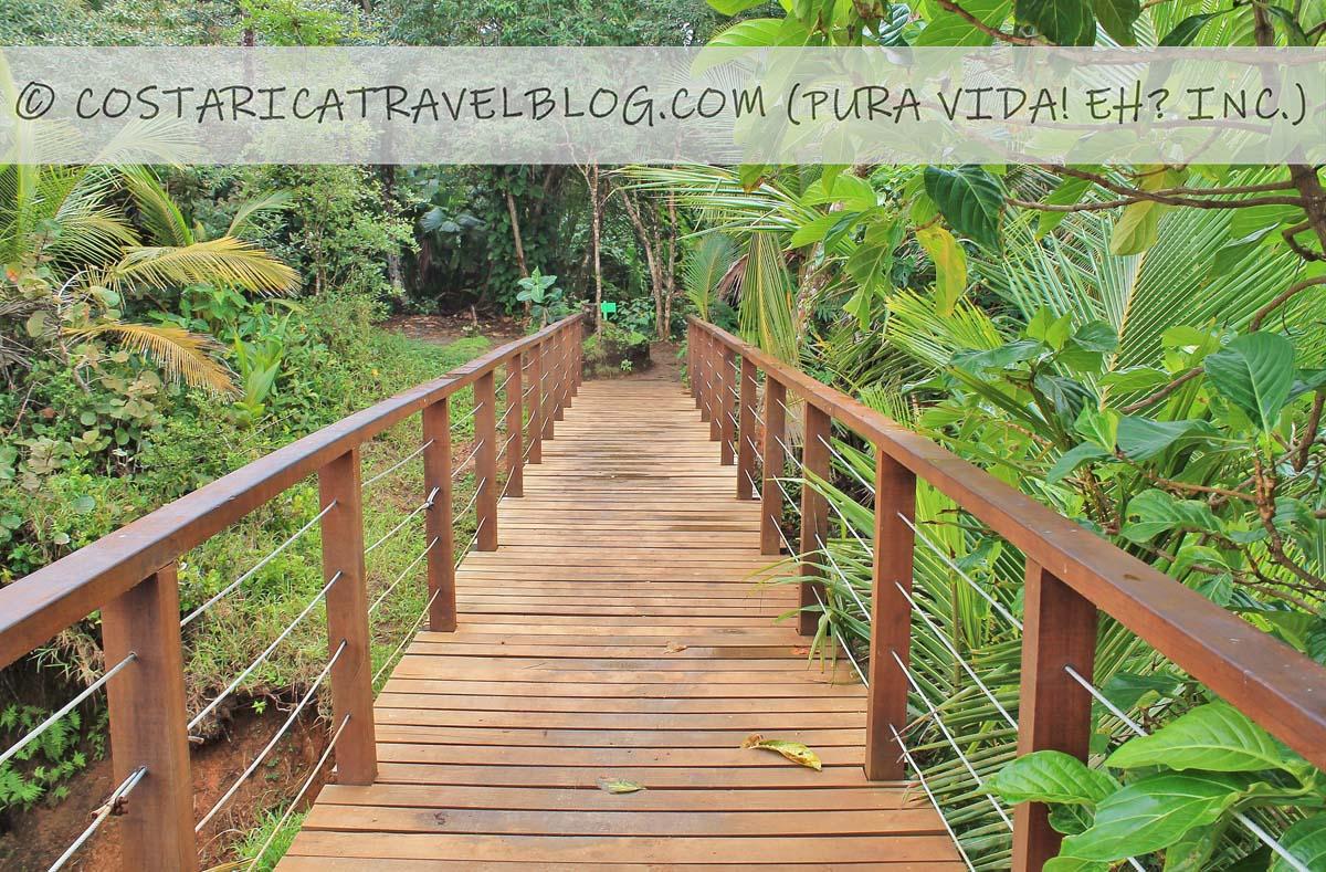 Puerto Viejo Costa Rica